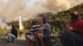 На популярном курорте Турции началась эвакуация туристов - ВИДЕО