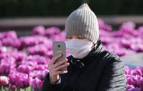 Число  инфицированных COVID-19 в Беларуси достигло 53 973 человек