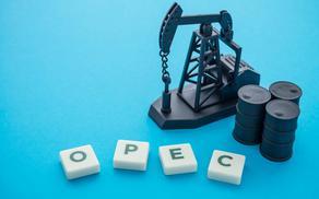 Azerbaijan performs duties assumed before OPEC+ countries