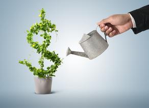 Меры правительства для поддержания инвестиционной стабильности в Грузии