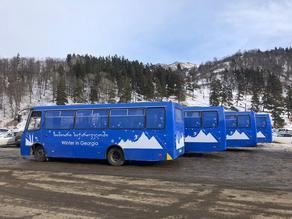 ბაკურიანში ავტობუსები მგზავრებს უფასოდ მოემსახურება