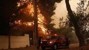 Лесной пожар в Греции - эвакуированы жители нескольких сел