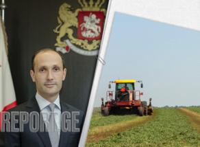 ფერმერები 50 მლნ-იან საგრანტო დახმარებას მიიღებენ - დავითაშვილი
