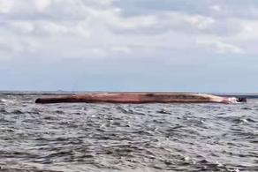 ჩინეთის წყლებში ორი გემის შეჯახების შედეგად ხუთი ადამიანი დაიკარგა