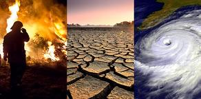 კლიმატის ცვლილების გამო დედამიწაზე ცხოვრება გაუარესდა