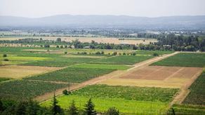 მიწების სრულად რეგისტრაცია შესაძლებელია