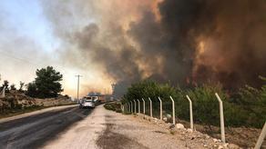Масштабный пожар в Анталии - огонь приближается к домам и отелям - ВИДЕО