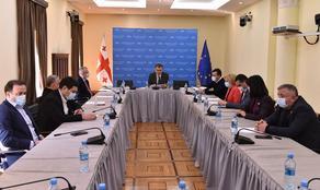 რეგიონული პოლიტიკისა და თვითმმართველობის კომიტეტმა 2021 წლის სამოქმედო გეგმა დაამტკიცა