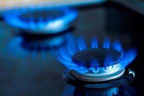 წლის ბოლომდე გაზის კომპანიებს ხელახალი ლიცენზიის აღება მოუწევთ