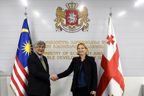 В каких секторах экономики будут сотрудничать Грузия и Малайзия