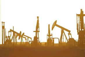 Oil price increases after 10% decrease in January