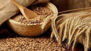 Azerbaijan increases wheat exports by 15%