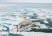 Ученые обнаружили остров на крайнем севере