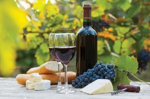საქართველო ღვინის ტურიზმის გლობალურ კონფერენციაში მონაწილეობს