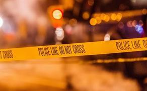 გურიაში მამამ შვილი მოკლა