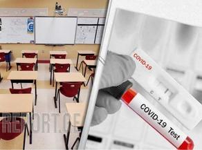 ეხება თუ არა 4-11 მაისის უქმე დღეები სკოლებსა და უნივერსიტეტებს - მინისტრის მოადგილის განმარტება