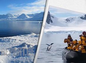 В Антарктике пингвин запрыгнул в лодку к туристам