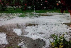 Hail hits Telavi