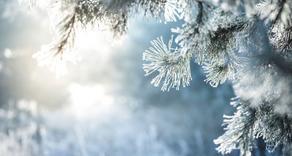 Прогноз погоды на 27-30 января
