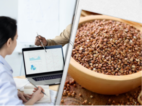 Azerbaijan, Russia only countries to which Georgia exports buckwheat this year