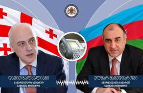 Georgian Foreign Minister and his colleague speak over phone on COVID-19