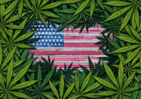 В еще одном штате США поддержали легализацию марихуаны